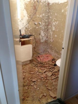 Gutting Our Horrible Bathroom House Nerd