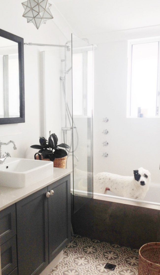 Designed for a Baby and a Dog Our 1970s Bathroom Renovation
